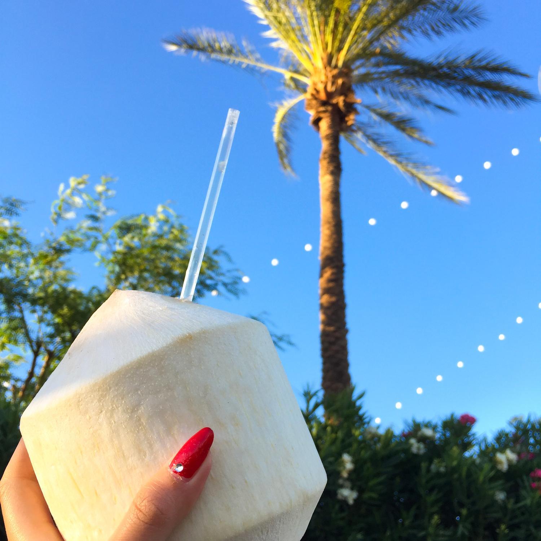 2016 Coachella Weekend 2