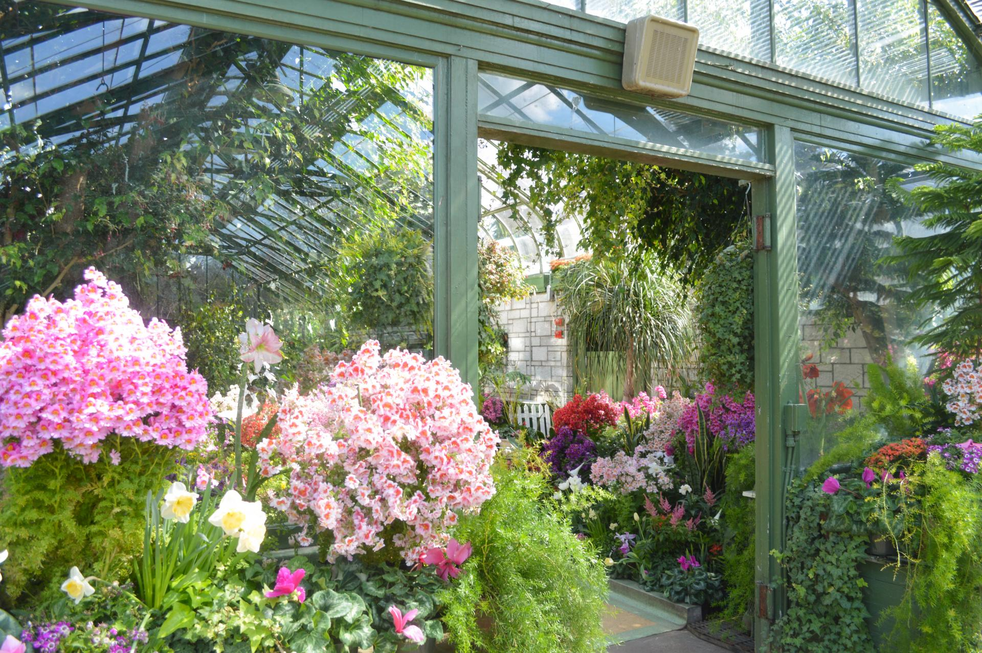 Floral-Showhouse-03