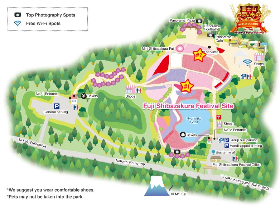 Map of Fuji Shibazakura Festival