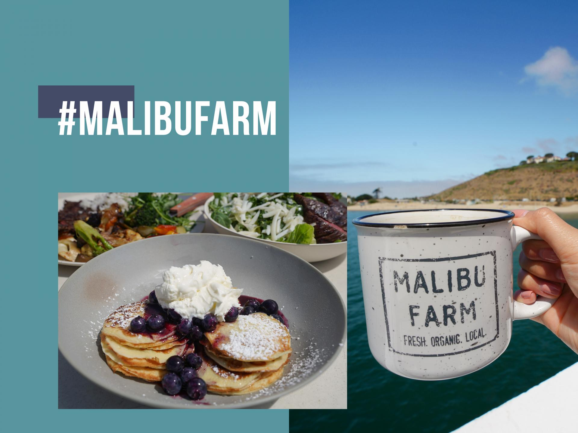 Lunch at Malibu Farm.