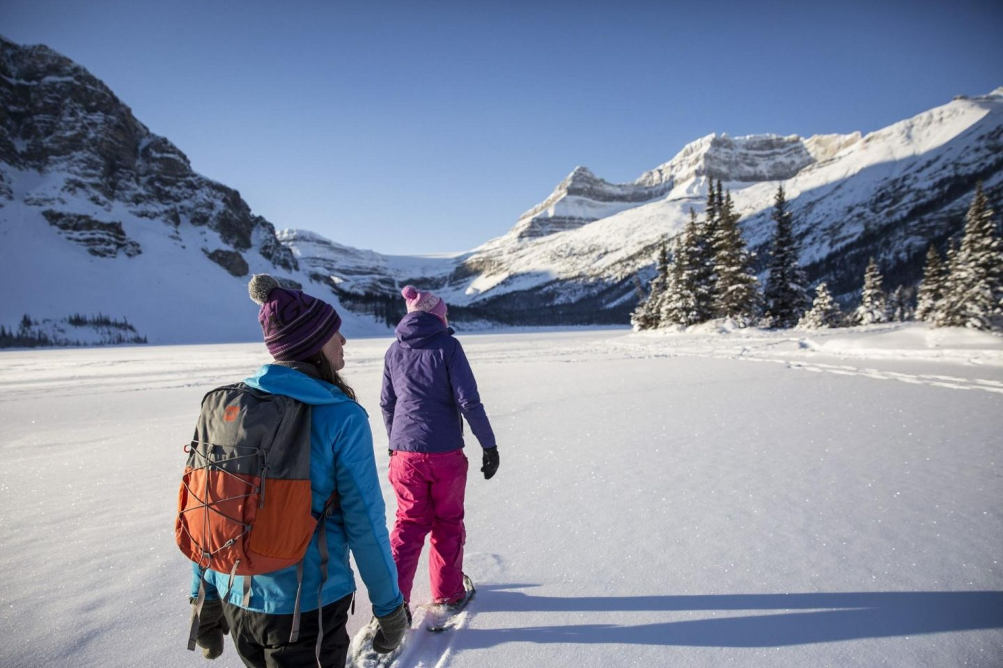 Snowshoeing at Bow Lake.