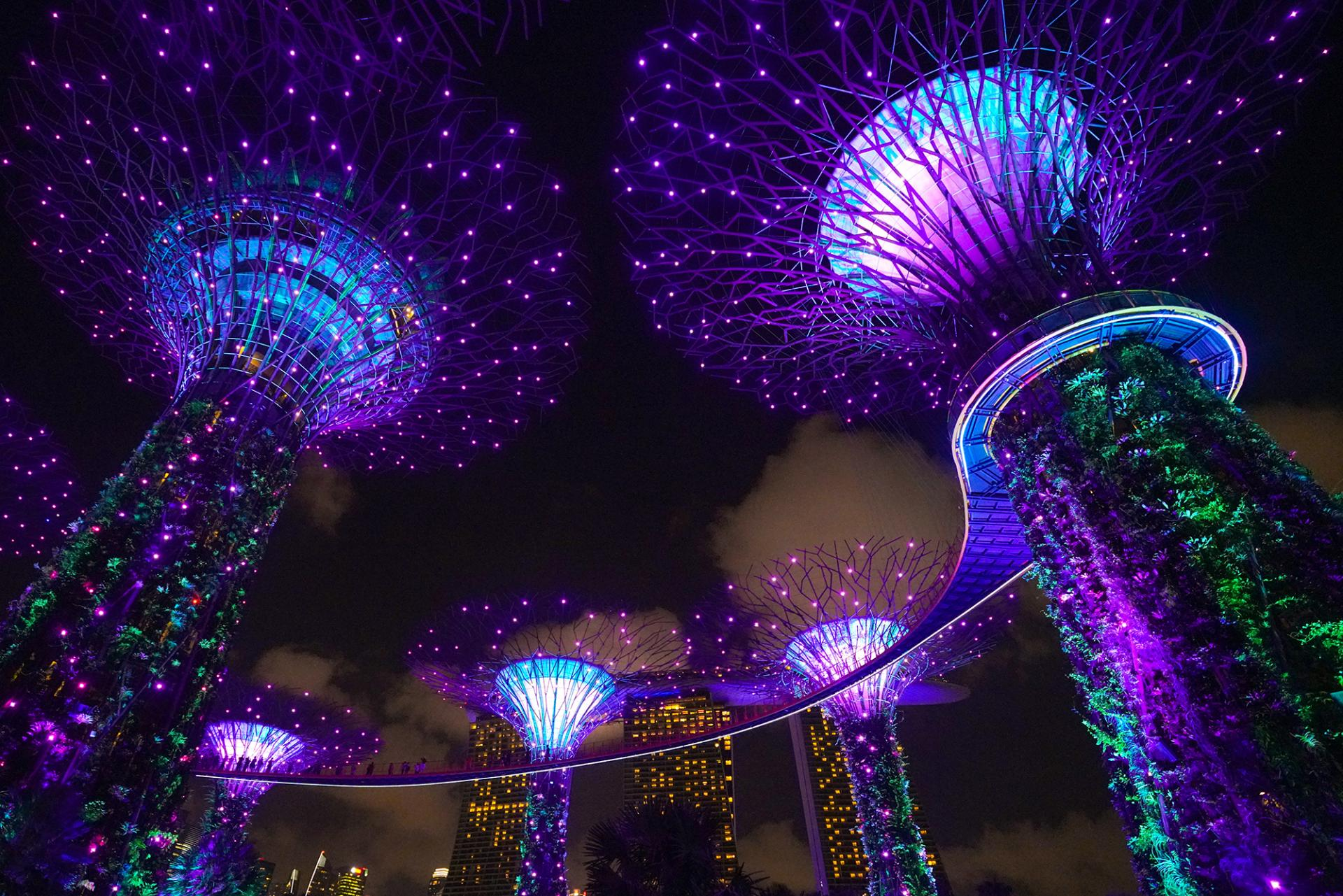 Light show at Supertree Grove in Gardens by the Bay.