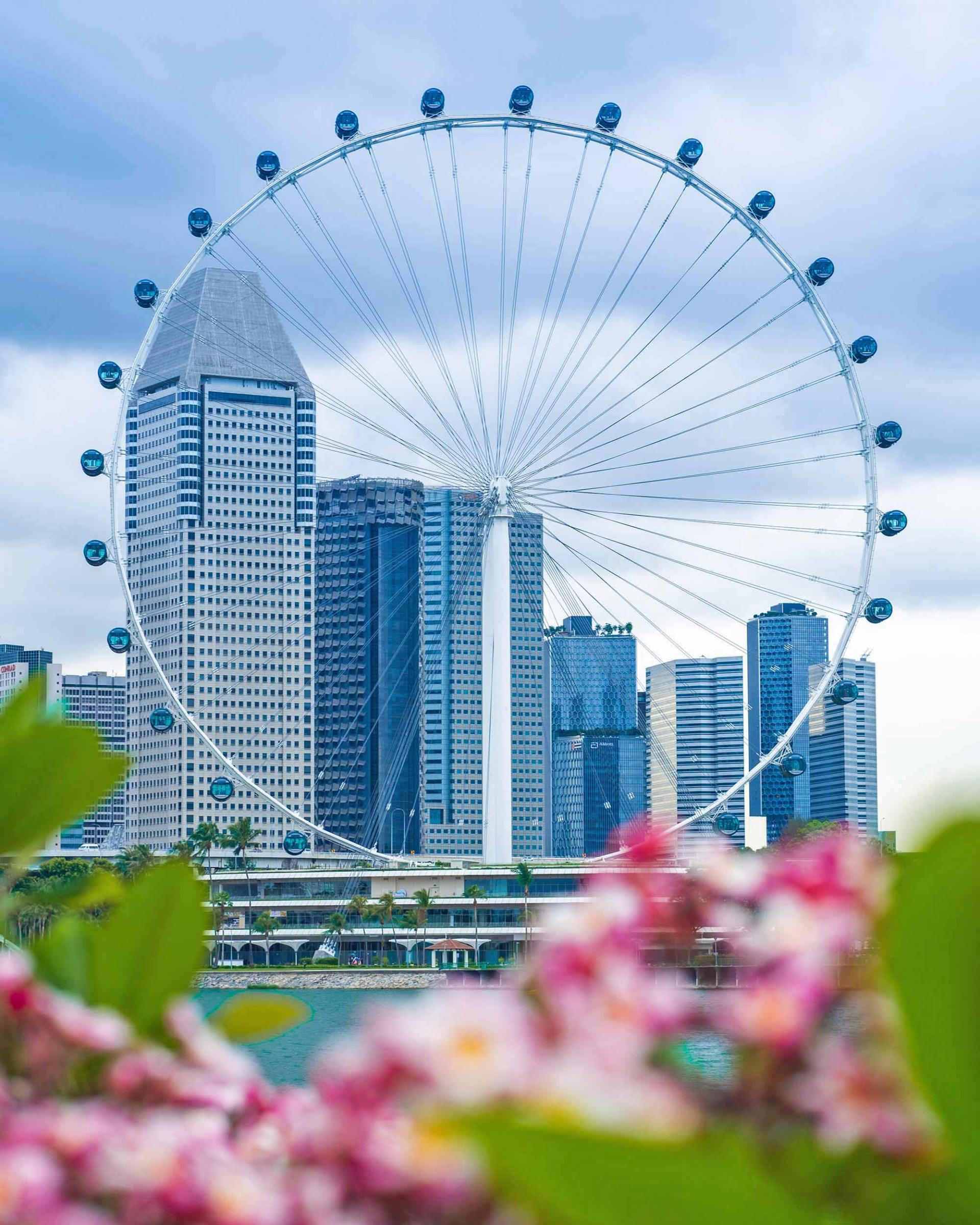 View of Singapore Flyer from Gardens by the Bay.