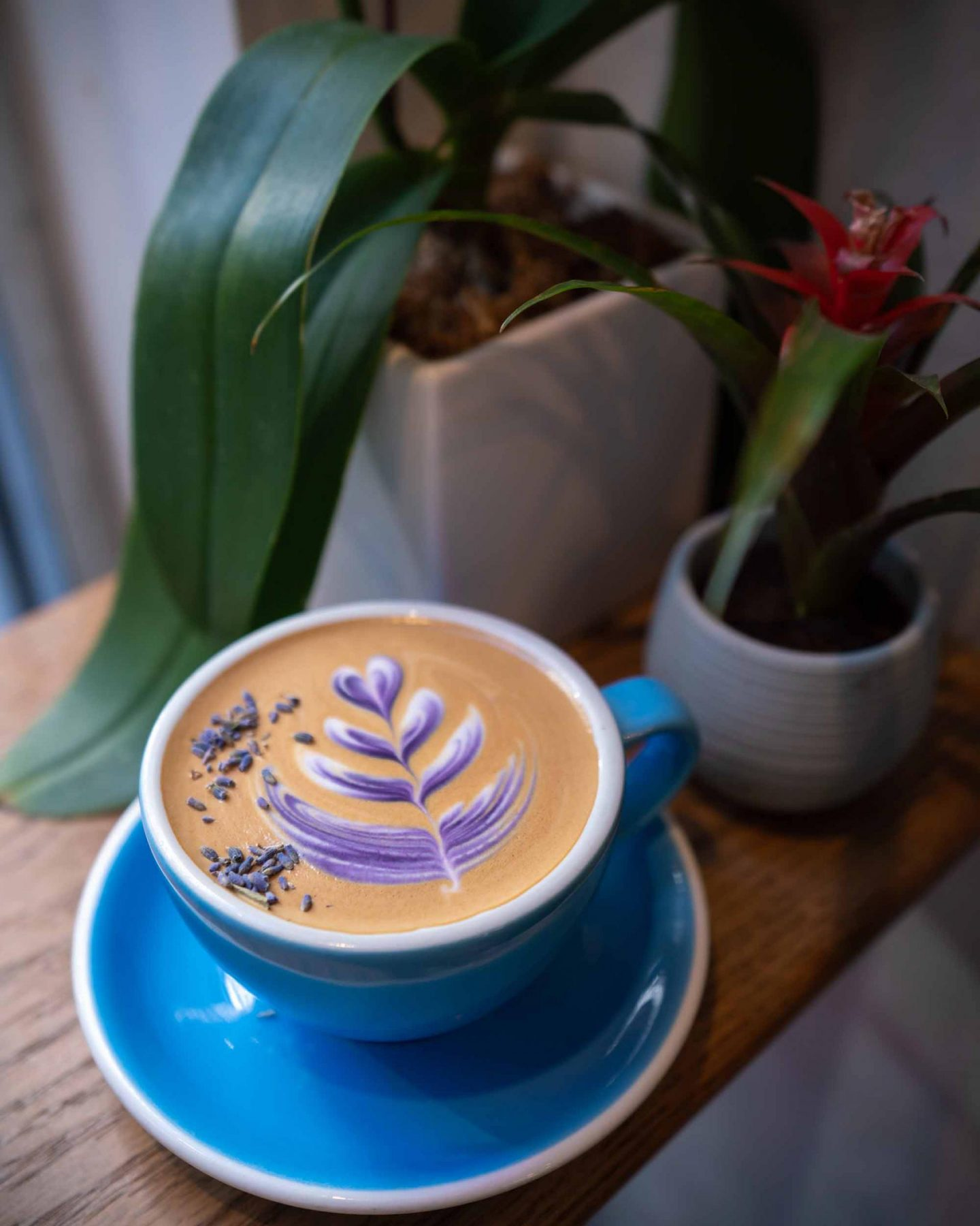 Lavender latte at Remi Flower and Coffee.