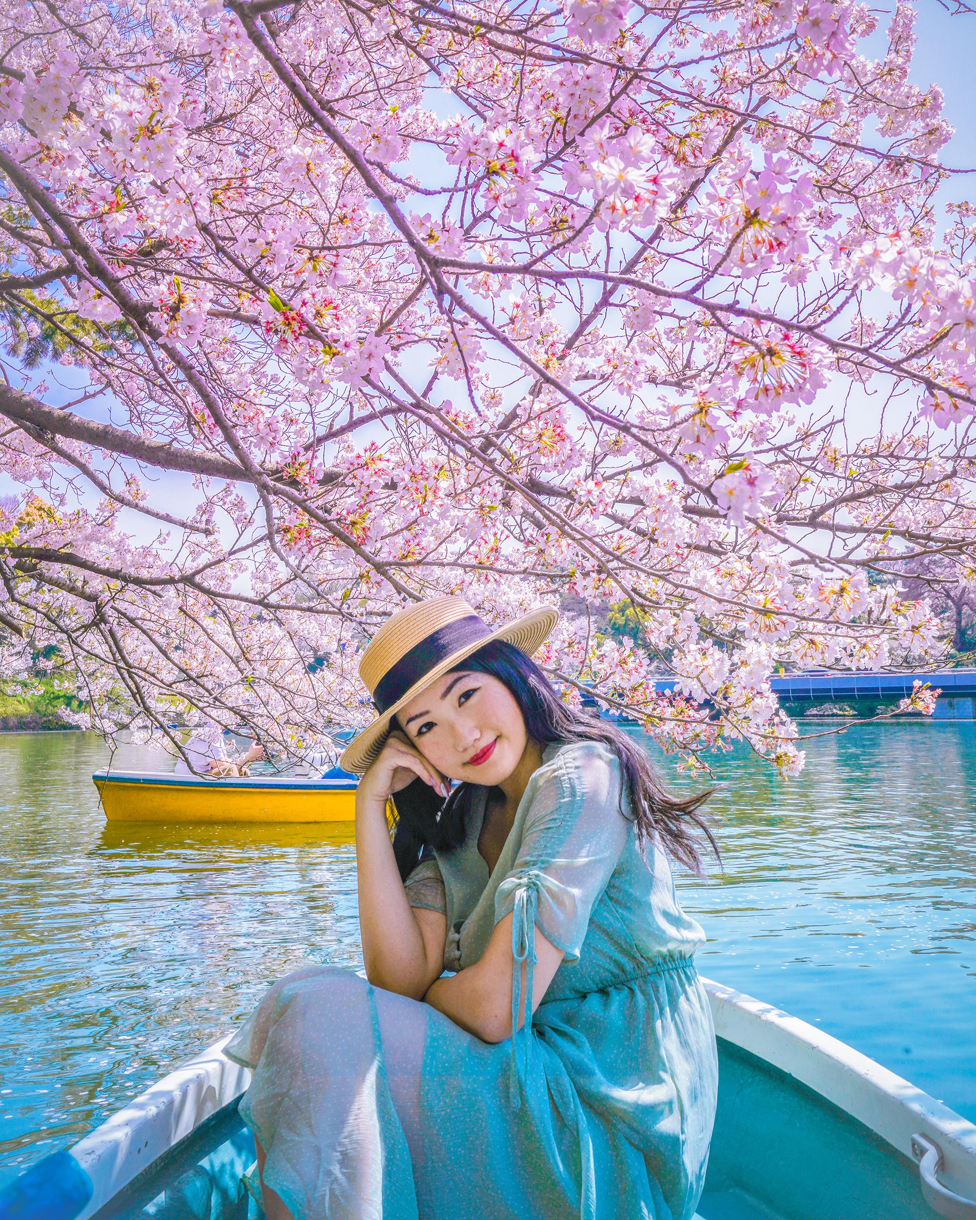 Enjoying hanami from a boat at Chidorigafuchi Park.