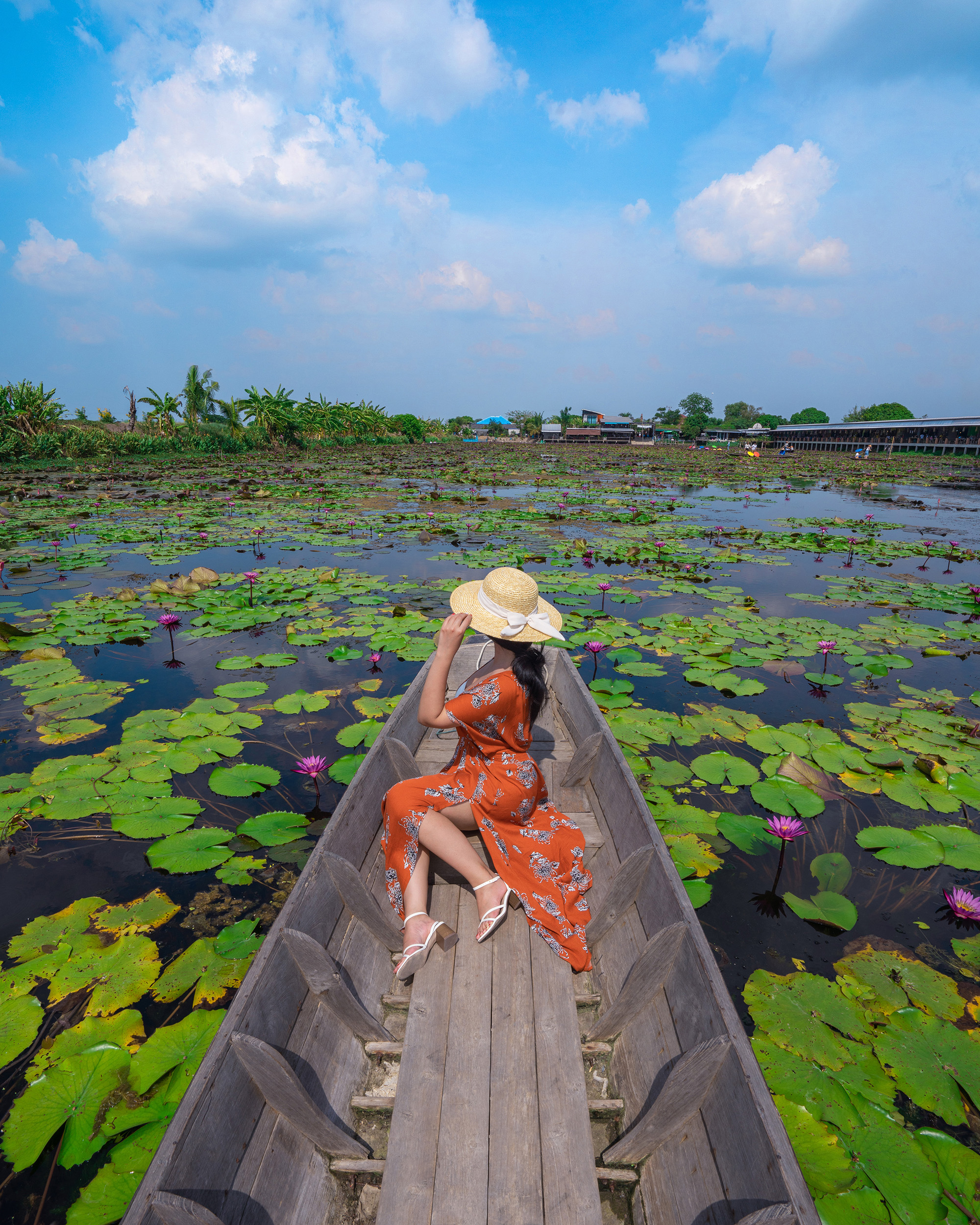 Taking an afternoon boat ride through the lily pond at Red Lotus Floating Market.