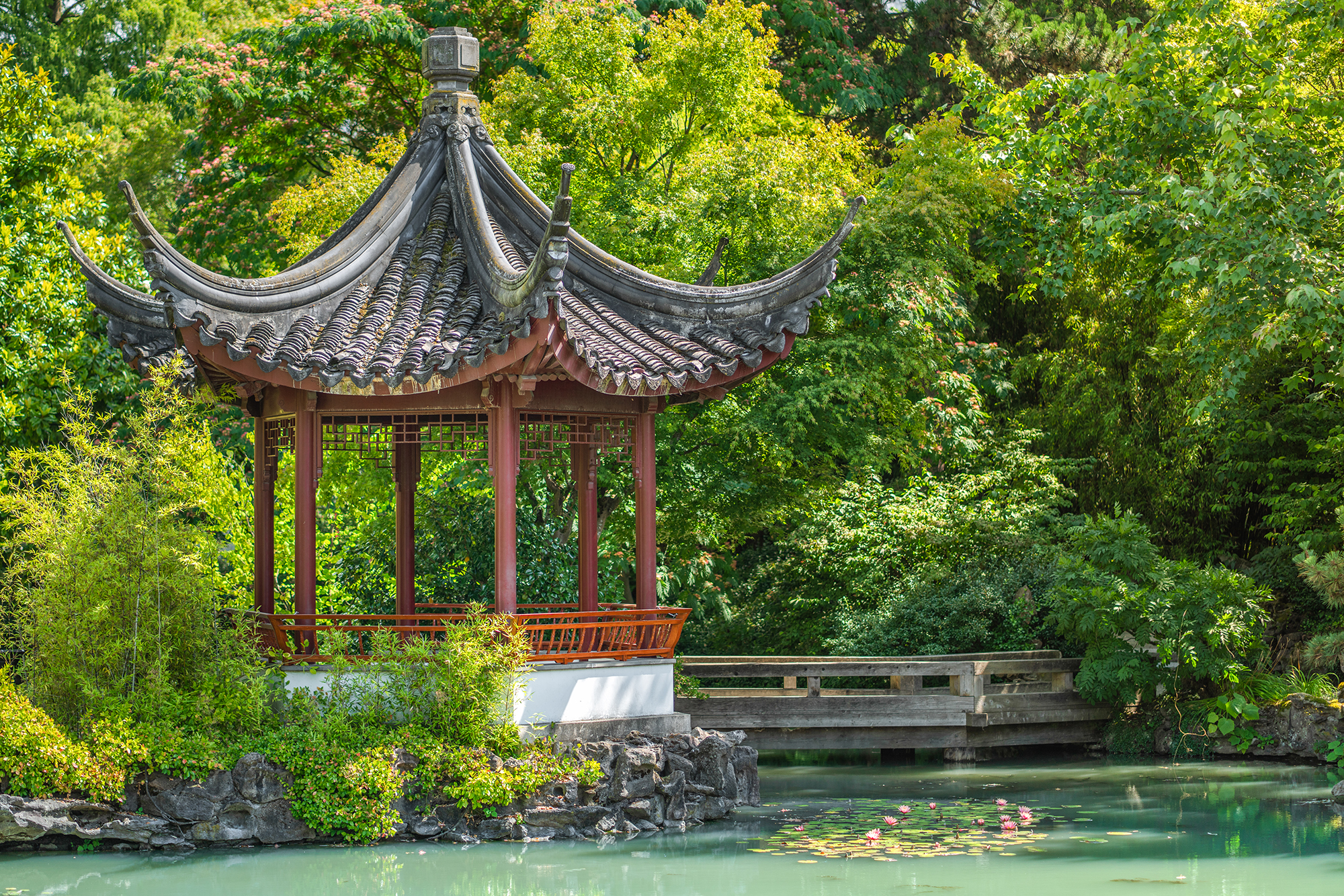 Beautiful afternoon at Dr. Sun Yat-Sen Classical Chinese Garden.