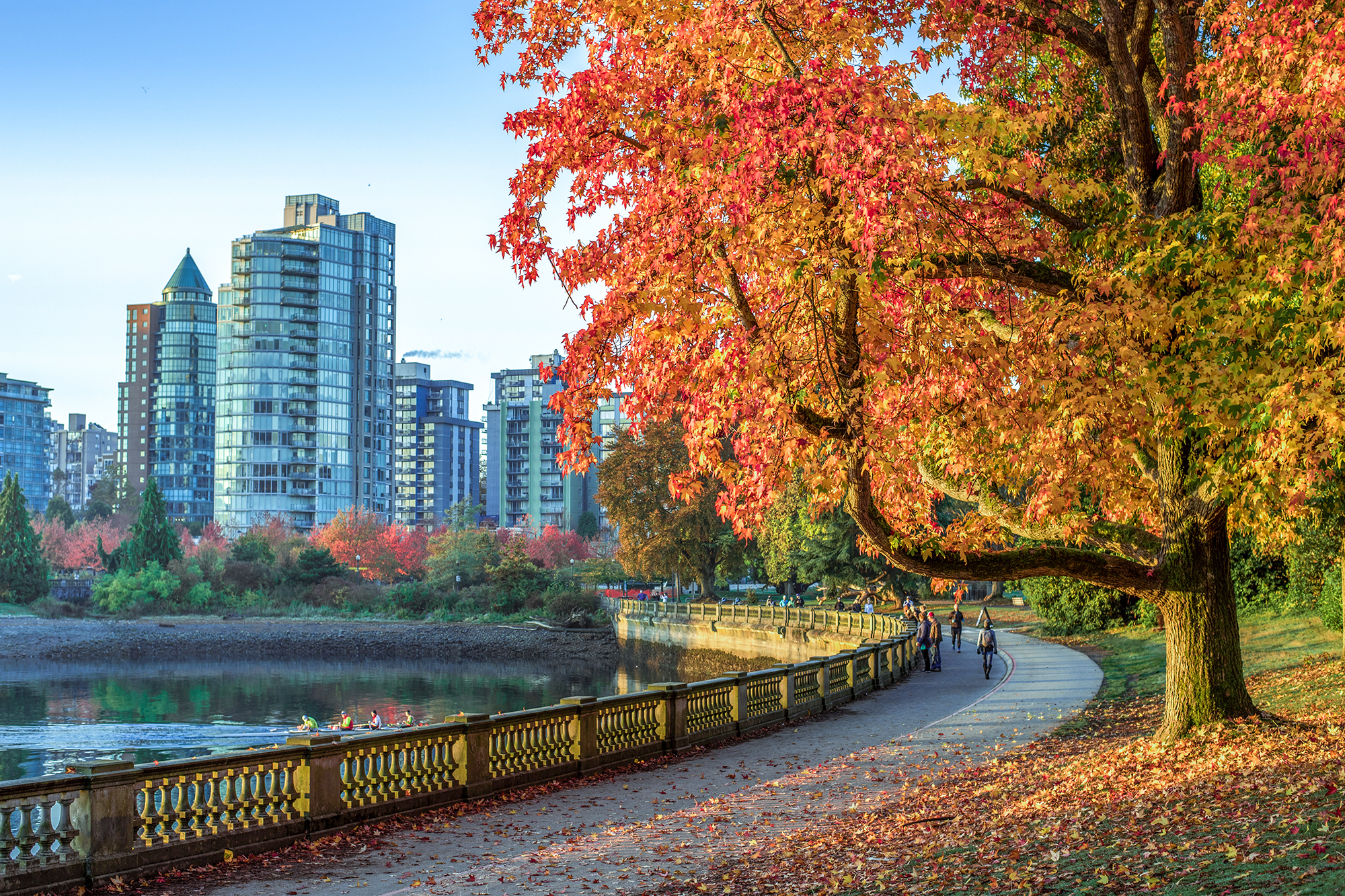 Beautiful fall afternoon at Stanley Park.