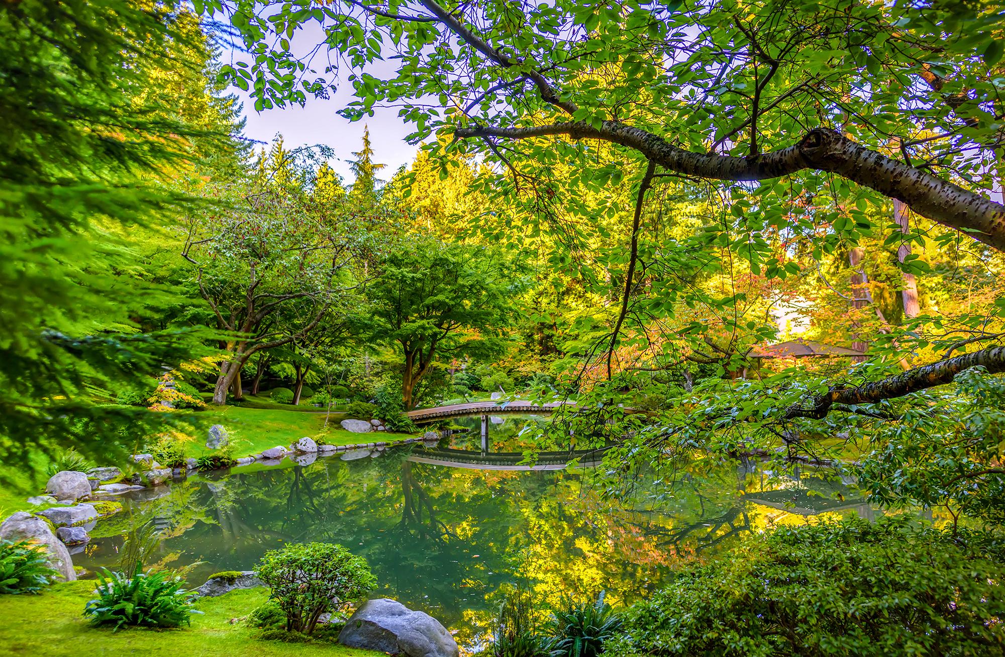 Peaceful afternoon at Nitobe Memorial Garden.