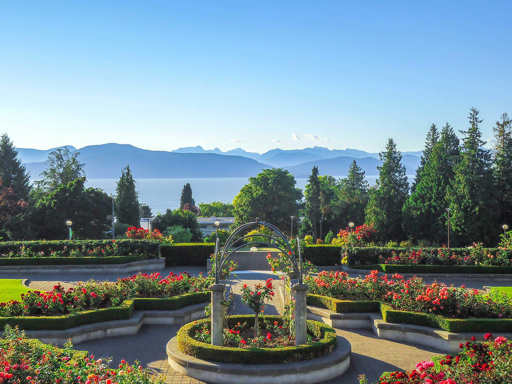 Gorgeous view from UBC Rose Garden.