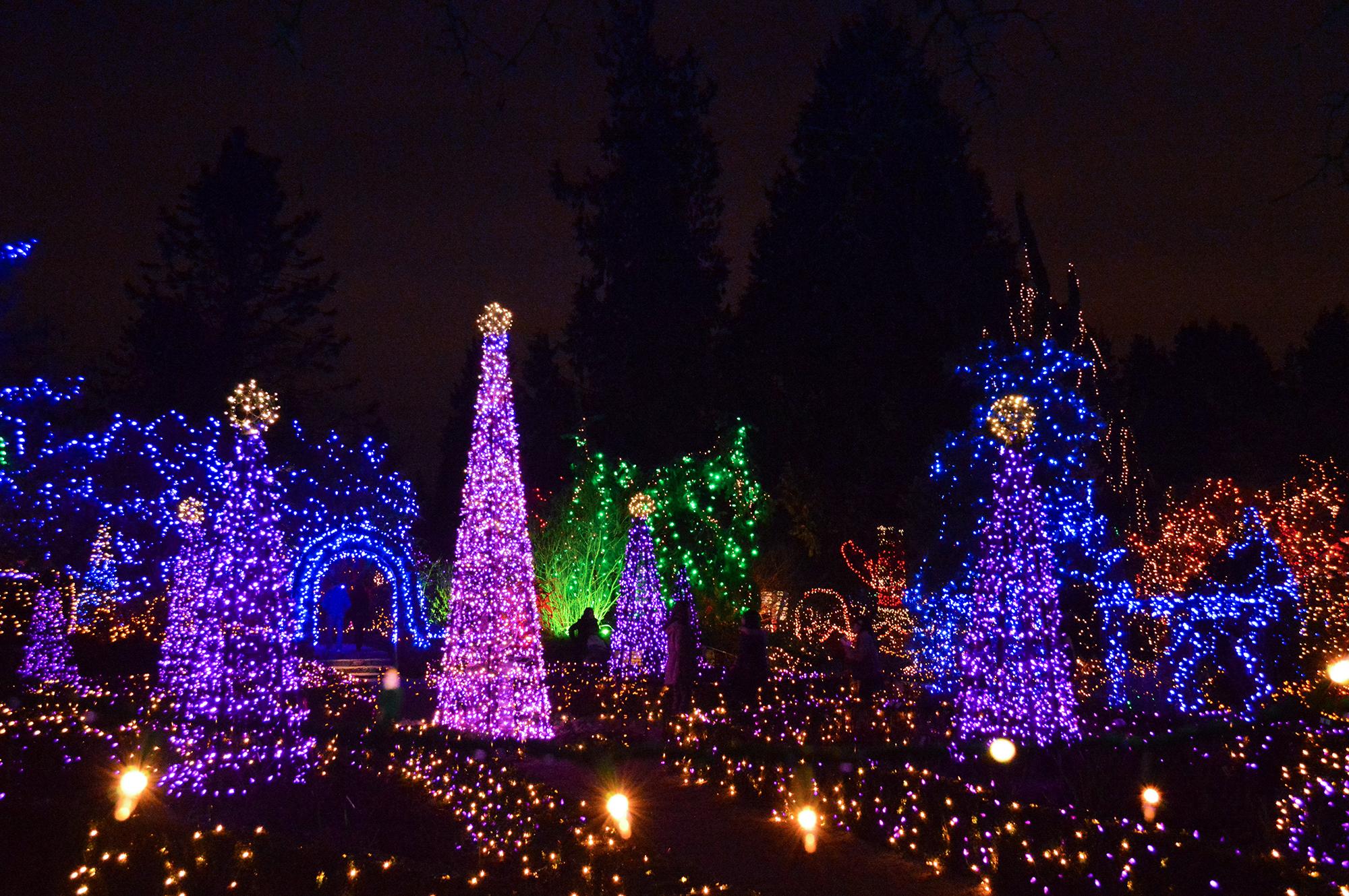 Festival of Lights at VanDusen Botanical Garden.