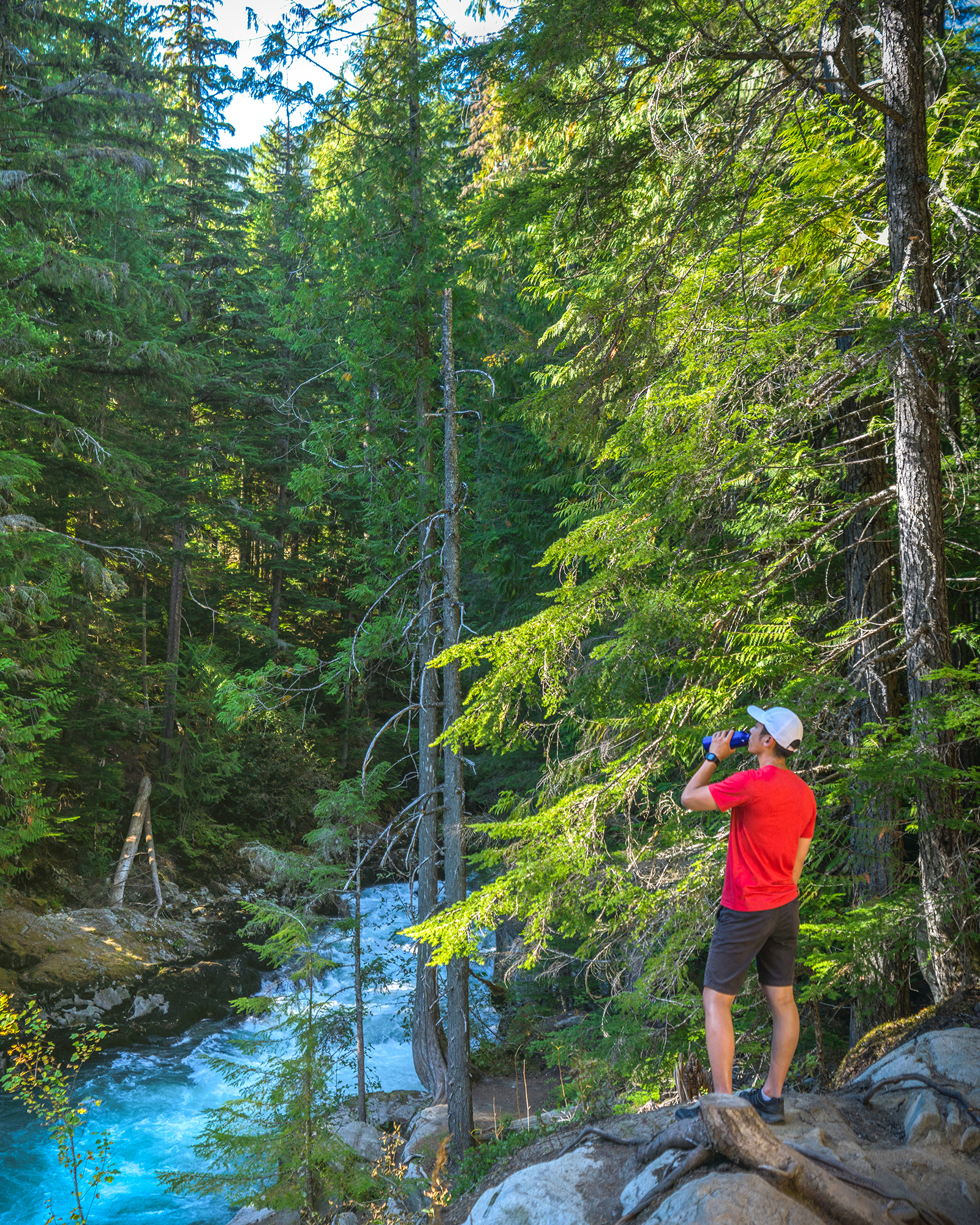 The Whistler Train Wreck Trail is an easy hike perfect for all ages!
